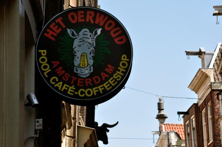 Coffee Shop Tour - 27