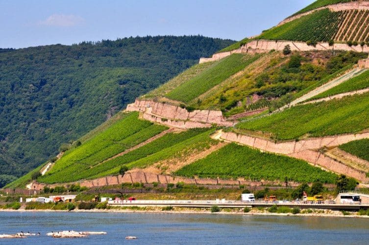 Along the Scenic Rhine - 003