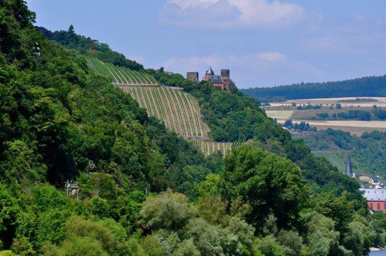 Along the Scenic Rhine - 248
