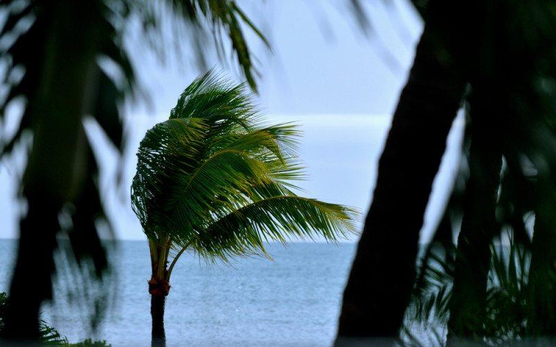 Hawks Cay Resort - 088