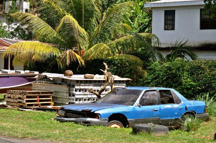 STR Cabrits, Dominica - 00044
