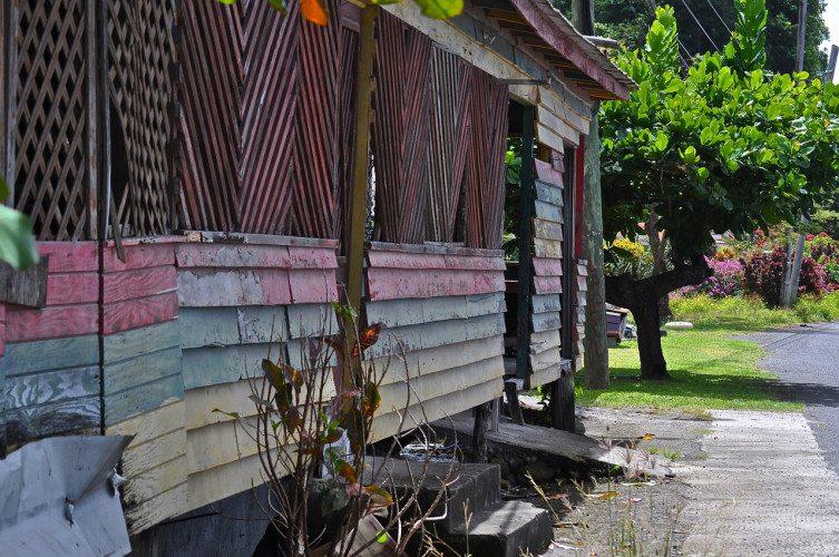 STR Cabrits, Dominica - 00048