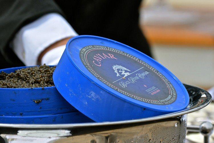 Caviar Sailaway - 00021