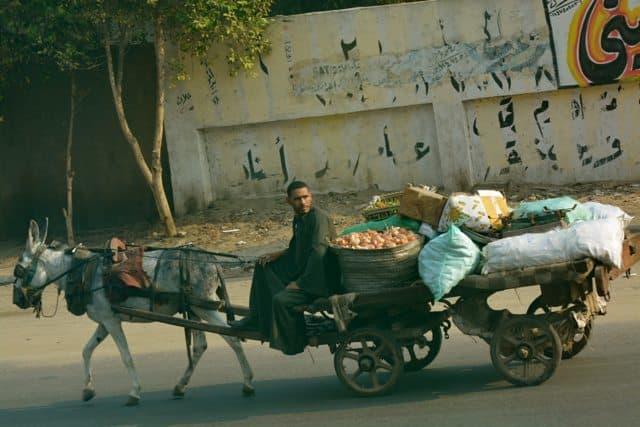 Cairo Street Scenes - 20