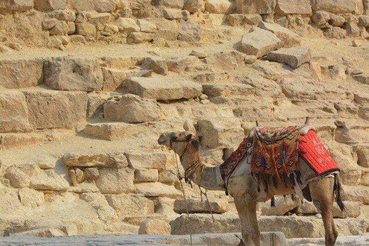 Giza Pyramids - 35
