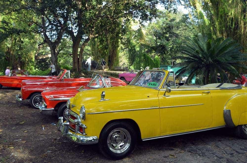 Havana3 (Lynn & Cele Seldon)-2