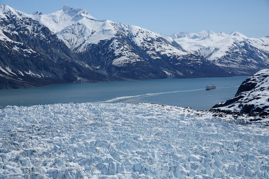 ms Westerdam in Glacier Bay
