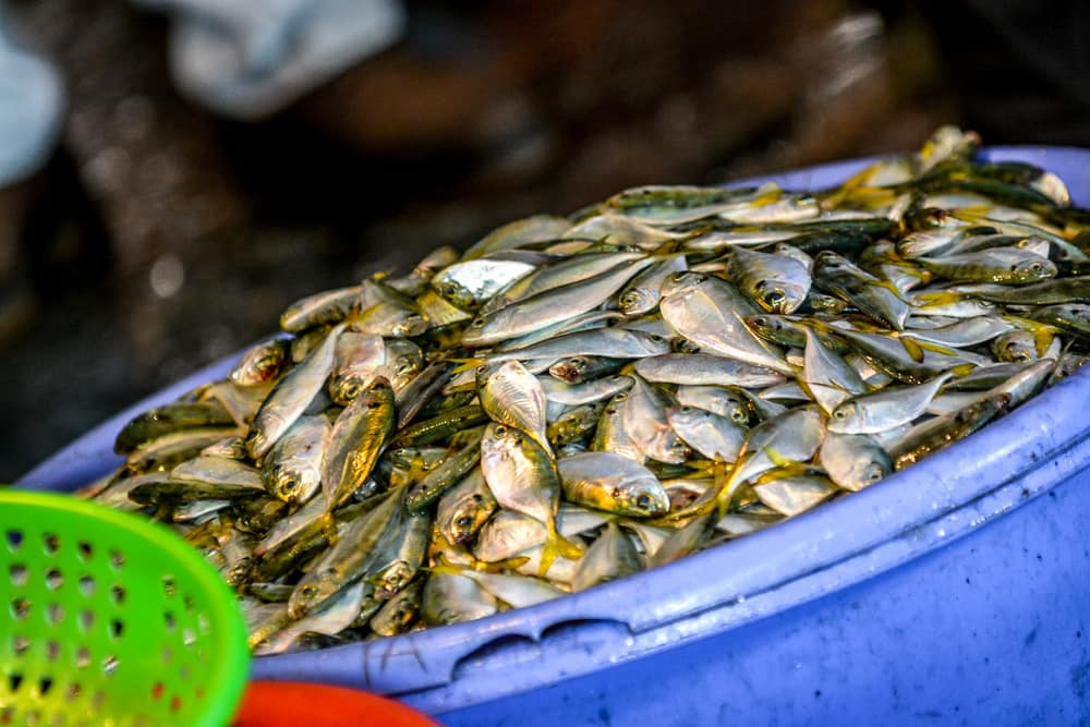 Shopping With The Chefs In Vietnam – 222
