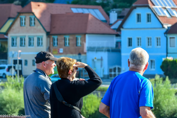 The Cause And Effect Of Viking River Cruises