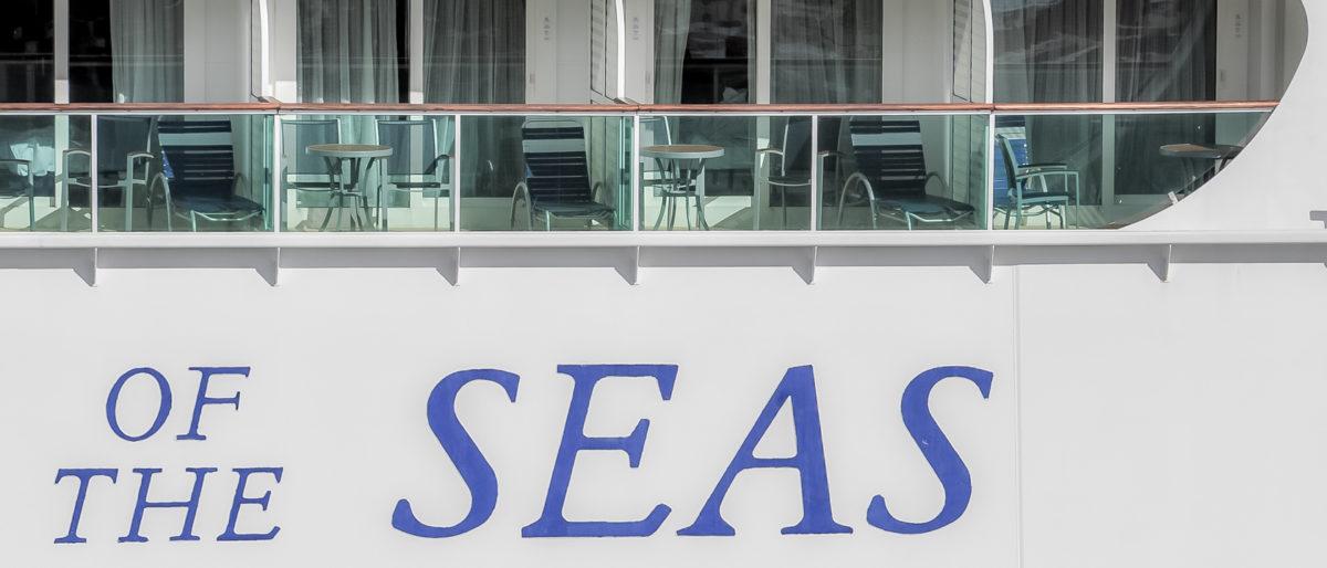 Royal Ship Swap Brings Enchantment To Space Coast Port Chris Cruises